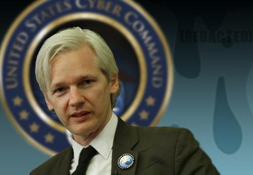 types of essays wikileaks