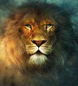 lion leo.jpg