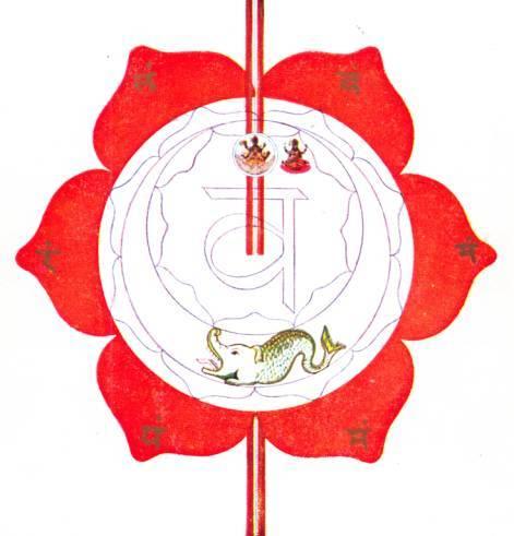 svadhishthana-symbol-avalon