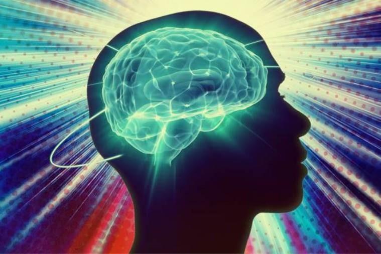 human-brain-activity