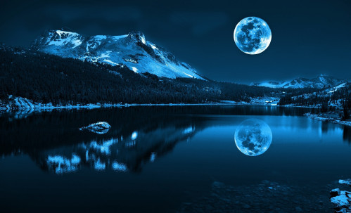 Blue-Moon-Woodland-Springs-Colorado